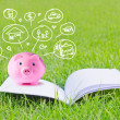 Pink piggy bank on booklet and icon design to represent the concept of saving money — Stock Photo #49670777