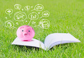 Pink piggy bank on booklet and icon design to represent the concept of saving money — Stock Photo