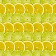 Abstract background with citrus-fruits slices of lemon and lime — Stock Photo