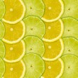 Abstract background with citrus-fruits slices of lemon and lime — Stock Photo #23559657