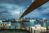 Shanghai urban landscape, Nanpu Bridge Crossing the River — Stock Photo