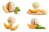 Yellow melon - collection — Stock Photo