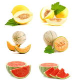 Melone — Stock Photo
