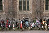 最高の輸送-自転車! — ストック写真