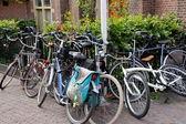 Das beste transport-fahrrad! — Stockfoto