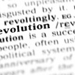 Stock Photo: Revolution word dictionary