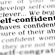 Stock Photo: Self-confident word dictionary