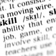 Stock Photo: Skill word dictionary