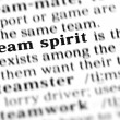 Team spirit  word dictionary — Stock Photo