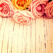 Vintage retro background with roses — Foto de Stock