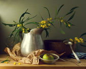 Spring still life with mimoza flowers — Stock Photo