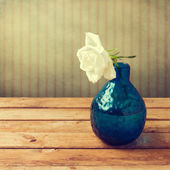 White rose in blue vase over retro background — Stock Photo
