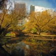 Central Park pond. — Stock Photo