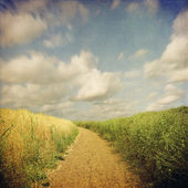 Endless road across field in retro style — Stock Photo