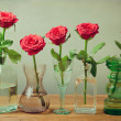 Rose flowers in vases, bottles and glasses — Stock Photo