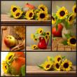 Collage of autumn season photos — Stock Photo