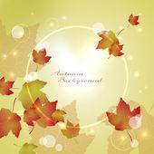 Sfondo autunno con foglie di acero — Vettoriale Stock