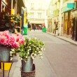 Flowers on street of Paris — Stock Photo