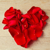 Heart made from rose flower petals — Stock Photo