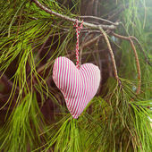 Handmade heart hanging on tree — Stock Photo