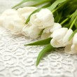 White tulips — Stock Photo #20728493