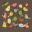 Group of birds singing — Stock Vector