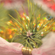 Closeup of Christmas tree decoration — Stock Photo