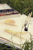 Paints, brushes and drawings on a green grass — Stock Photo