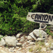 Canyon sign in the rocks — Stock Photo