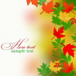 Background from autumn leaves - Stock Photo