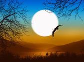 Landscape during sunset — Stock Photo