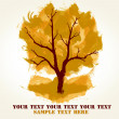 Autumn tree for design — Stock Photo