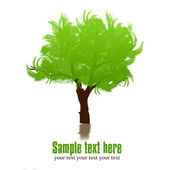 Background of green tree — Stock Photo
