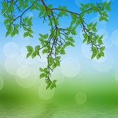 水に映る紅葉 — ストック写真
