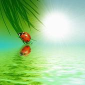 Lieveheersbeestje zittend op een groen blad — Stockfoto