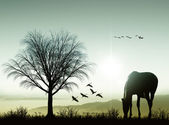 Horse on the background of the rising sun — Stock Photo