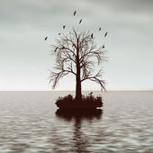 Tree in the water — Stock Photo