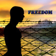 Stock Photo: Freedom