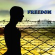 Freedom — Stock Photo