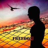Freedom — Stock Photo