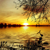 Sunset on the river — Stock Photo