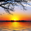 Sunshine on lake — Stock Photo