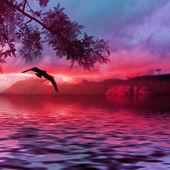 Landscape in purple tones — Stock Photo