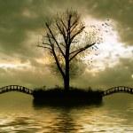 Tree, birds and bridge over river — Stock Photo