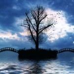Tree, birds and bridge over river — Stock Photo #41582339