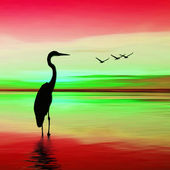 Bird inside of water — Stock Photo