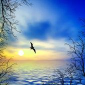 Güzel manzara — Stok fotoğraf