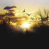 Beautiful landscape — Fotografia Stock