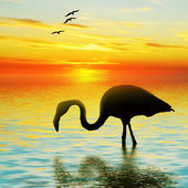 Bird on lake — Stock Photo