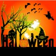 Color on Halloween night — Stock Vector